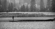 21st May 2019 - Solitude at The Lake