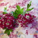 Red Hawthorn by snowy