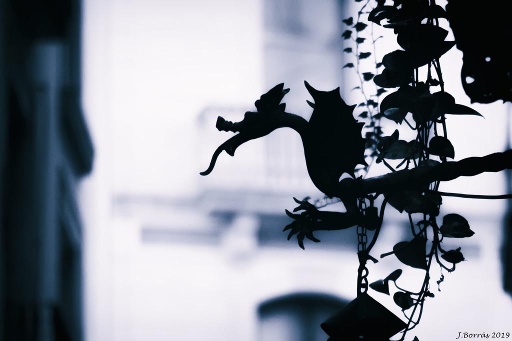 Dragon by jborrases