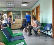 22nd May 2019 - A visit to the vet
