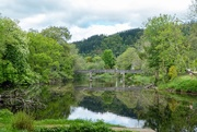 22nd May 2019 - River Teith