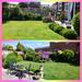 Back garden  by beryl