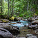 Avalanche Creek in Glacier Park by 365karly1