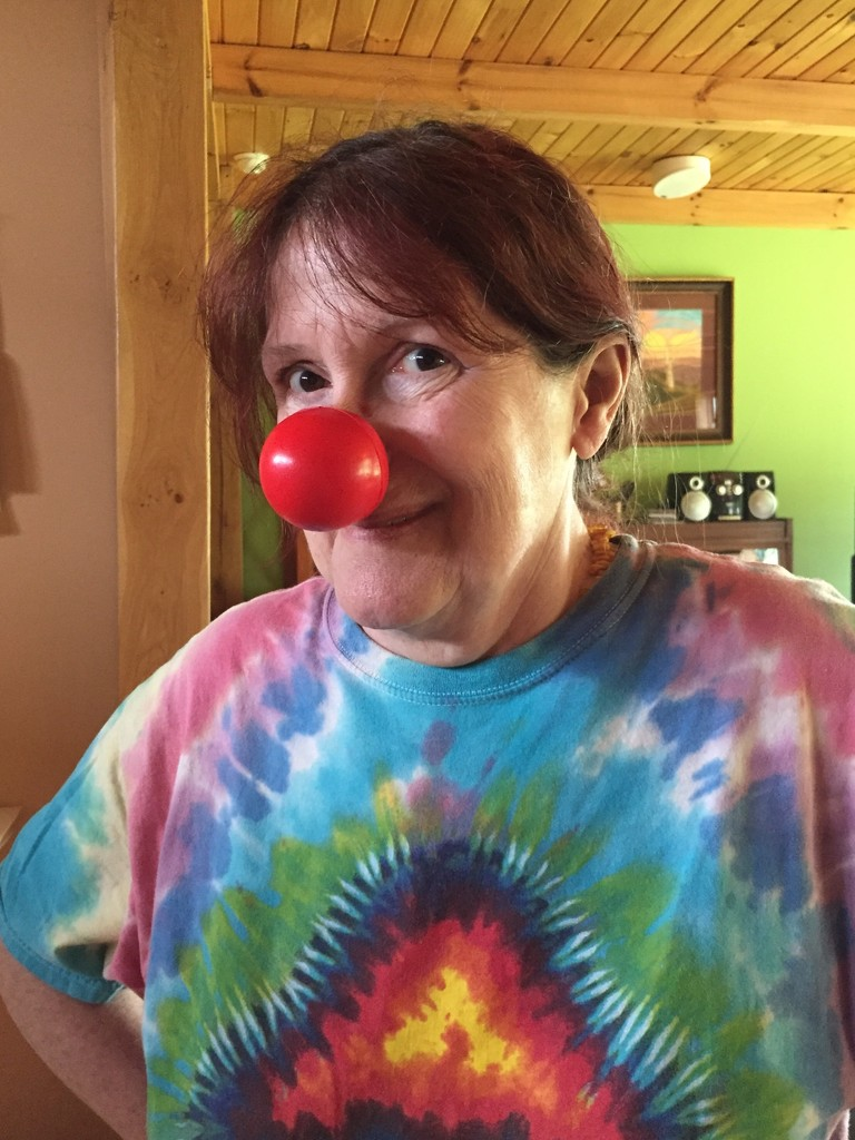 It's Red Nose Day! by mcsiegle