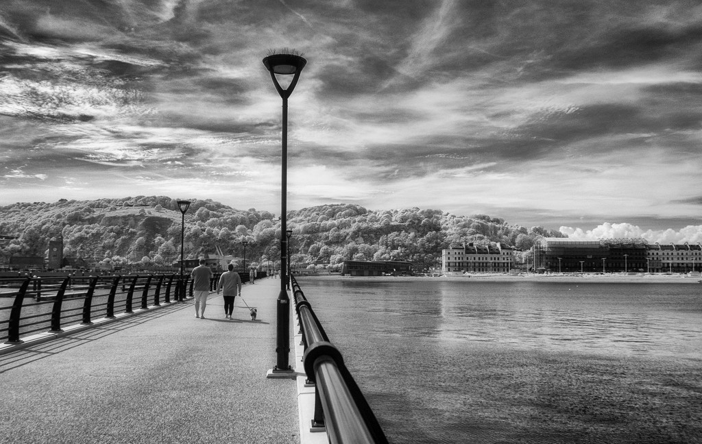 Prince of Wales Pier by fbailey
