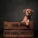 Dogue de Bordeaux by markyl