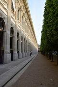 23rd May 2019 - palais royal
