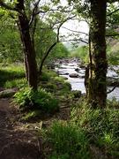 26th May 2019 - River Glaslyn