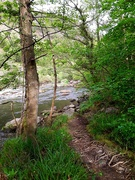 27th May 2019 - River Glaslyn -2