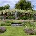 Formal Garden by carole_sandford