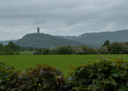 25th May 2019 - Wallace Monument