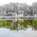 Spring reflections by joansmor