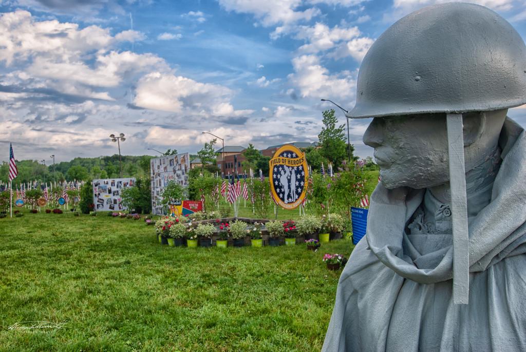 Veteran's Gaze by ggshearron