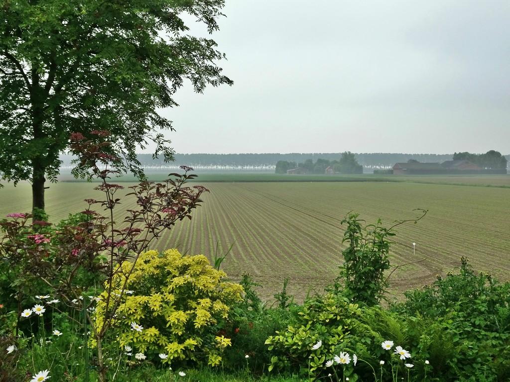 countryside by gijsje