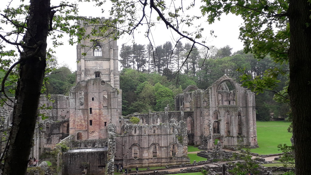 Fountains Abbey by mave