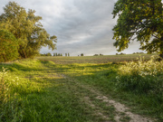 30th May 2019 - Not so far from Constable country