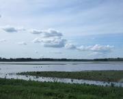 27th May 2019 - May 27: Flooding