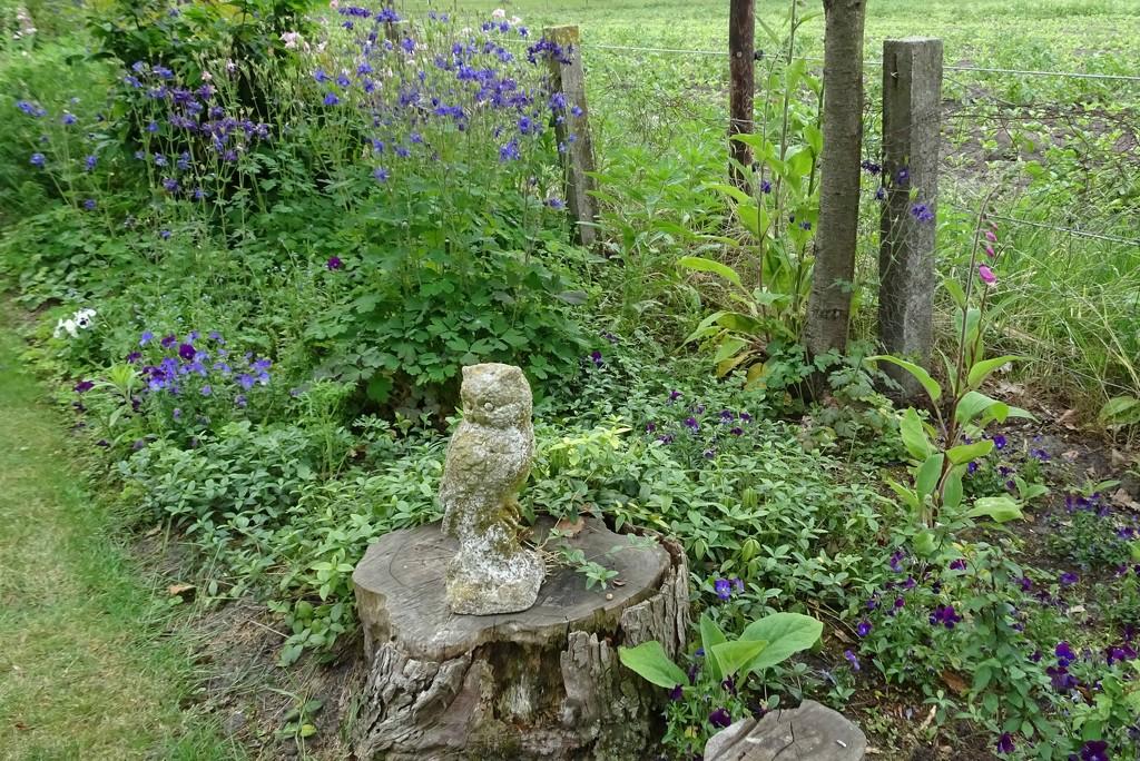 just a little part of the garden by gijsje