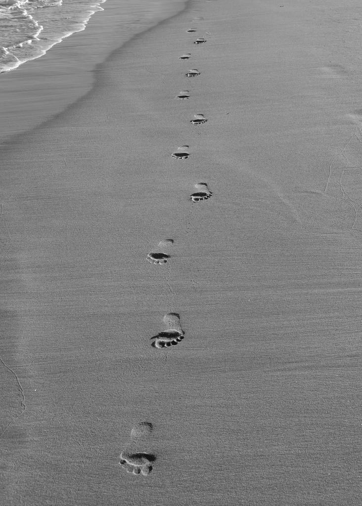 Footprints In the Sand..._DSC5102 by merrelyn