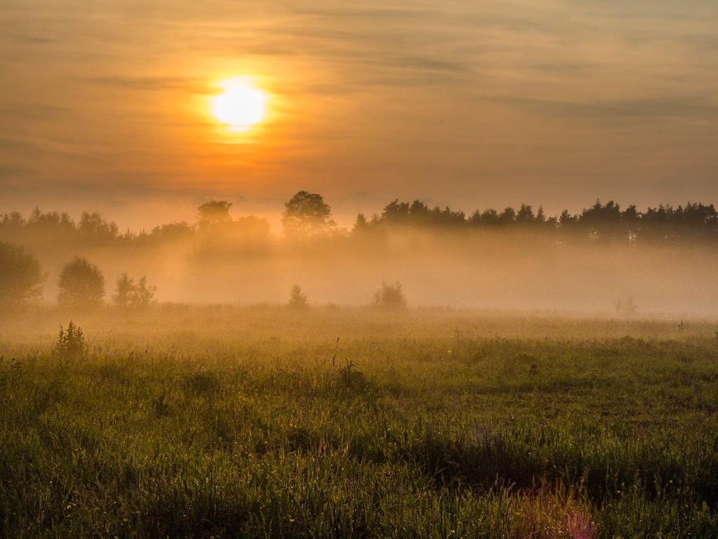 An evening haze by haskar