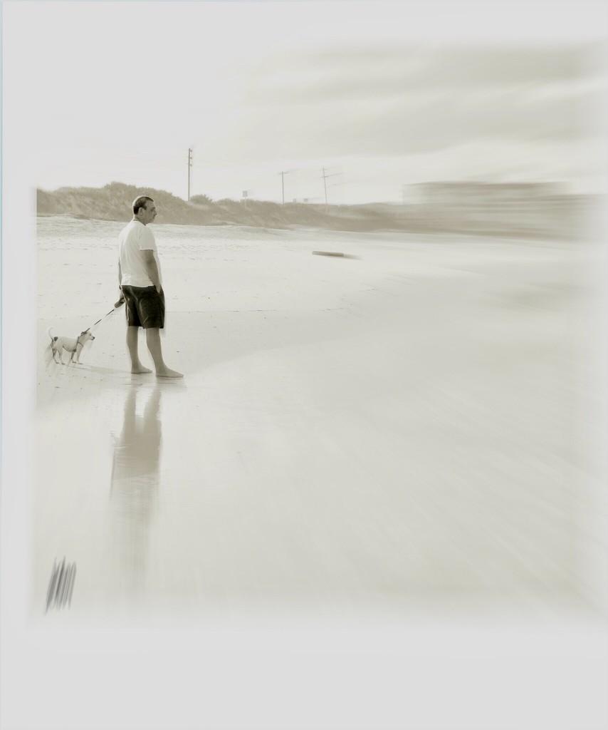Woof by joemuli