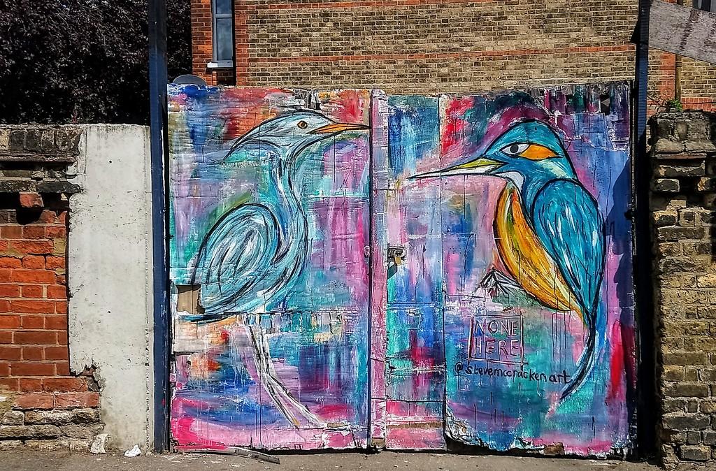 Birds by Steve McCracken by boxplayer