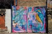 25th May 2019 - Birds by Steve McCracken