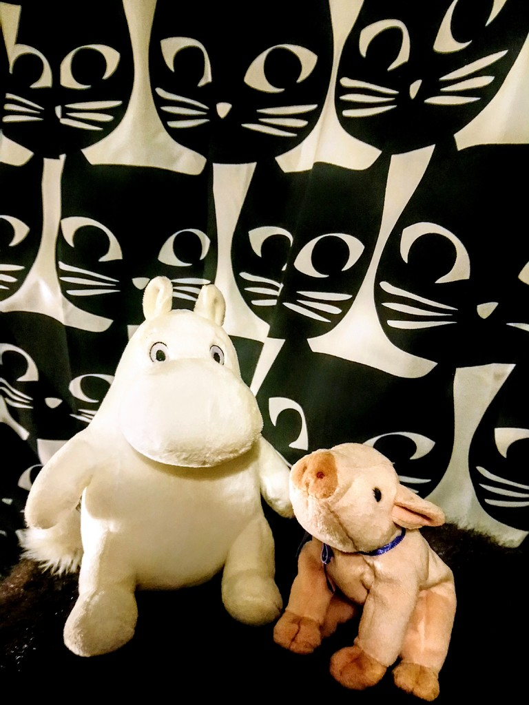 Moomin and Piggy and the cats by boxplayer