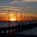 Enjoying The Sunset...._DSC2105 by merrelyn
