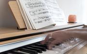 4th Jun 2019 - Piano player