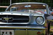 2nd Jun 2019 - Ford Mustang