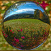 Autumn Leaves in a Lensball. by ludwigsdiana