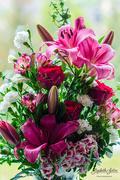 5th Jun 2019 - A bouquet of flowers