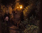 6th Jun 2019 - Evening stroll