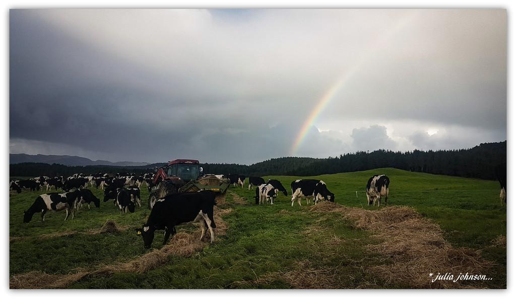 More Rainbows... by julzmaioro
