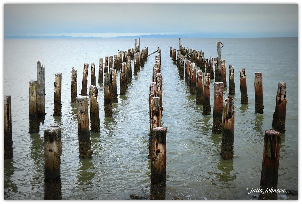 Those Wharf poles again... by julzmaioro