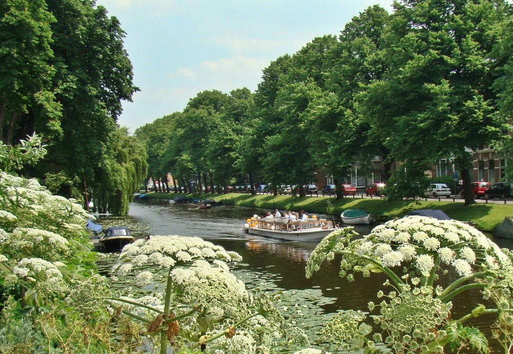 Leiden city by gijsje