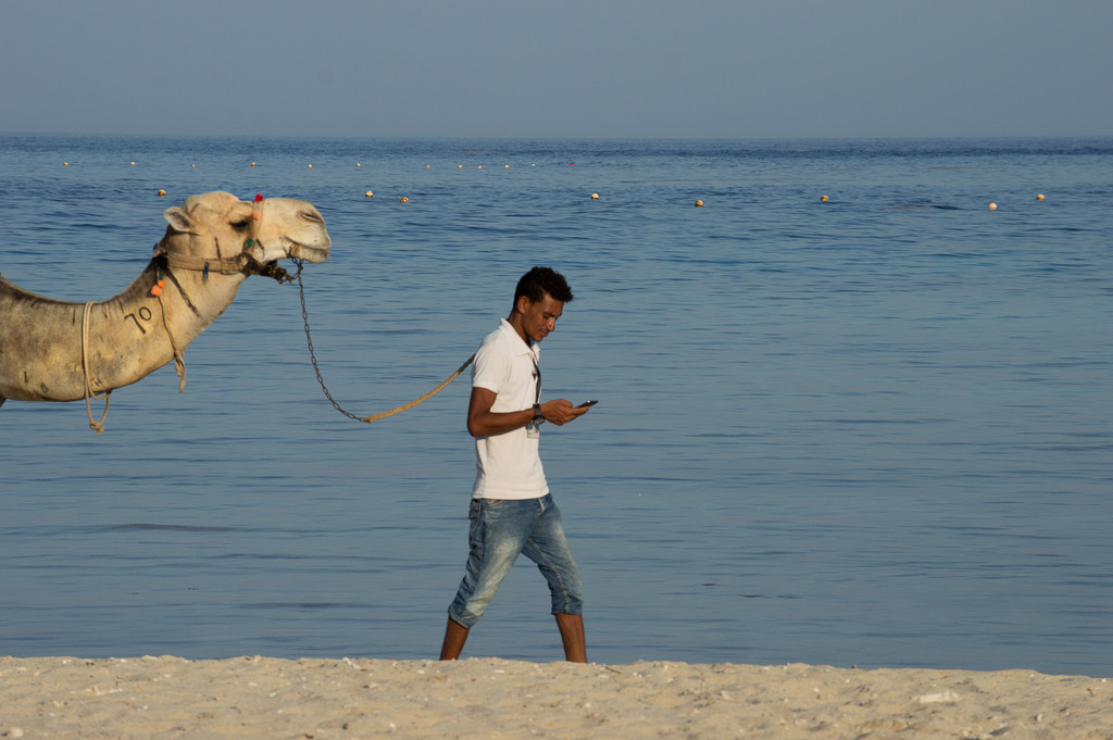 The camel man by caterina