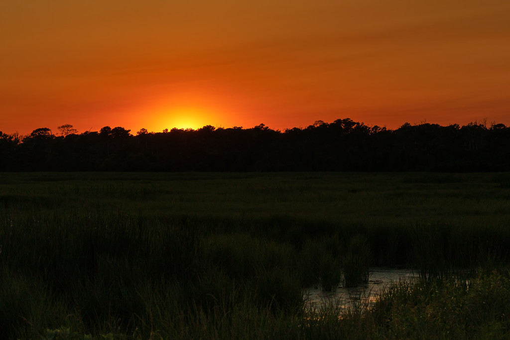Chincoteague at Sunset by shesnapped
