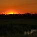 Chincoteague at Sunset