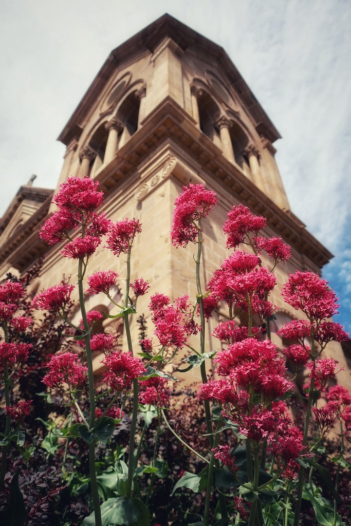 The Basilica of  St Francis of Assisi in Santa Fe, New Mexico by louannwarren