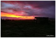 10th Jun 2019 - Red Sky Morning...