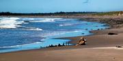8th Jun 2019 - Martinique Beach