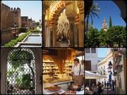 10th Jun 2019 - Spanish holiday day 3 Córdoba
