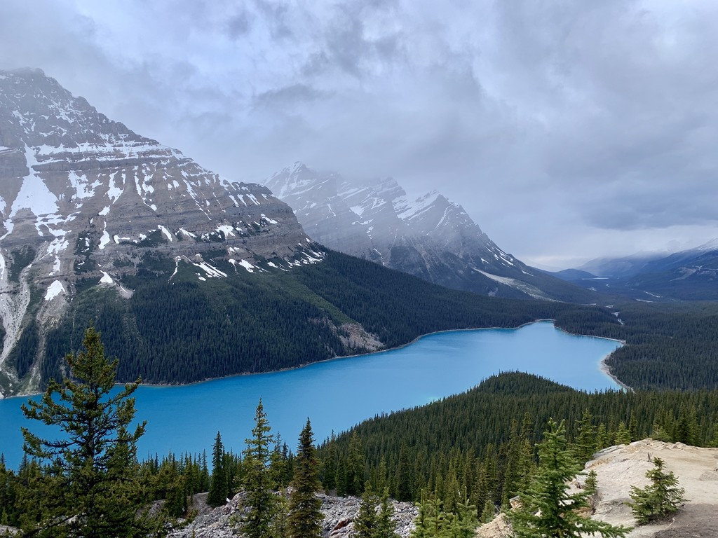 Peyto Lake in the Canadian Rockies  by radiogirl