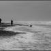 Another beach shot