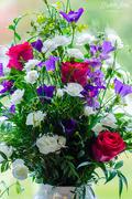 11th Jun 2019 - A bouquet of flowers