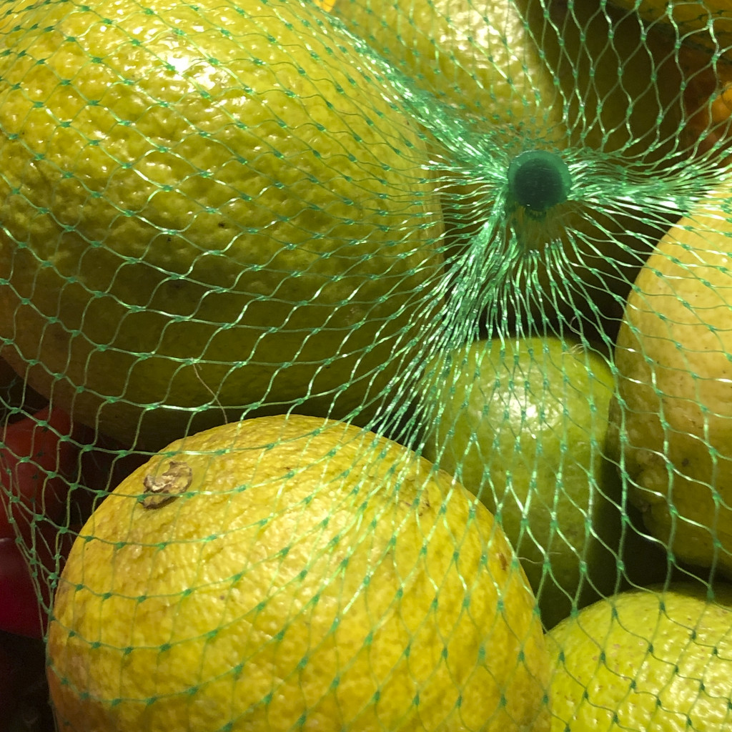 A Lemony Kind of Day by ethelperry