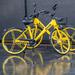 Yellow bike Reflections