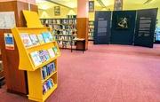 8th Jun 2019 - Artemisia in the library